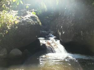 El Manantial y la laguna 014